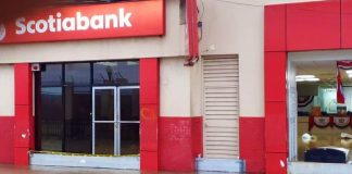 Scotia adds functions to its bank machines Business