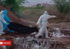 India coronavirus: Officials sorry after video shows bodies flung into pit