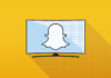 Future of TV Briefing: A Q&A with Snap's original content chief Vanessa Guthrie